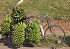 Sur la route de Masindi