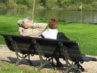 Sur le banc, face à la seine