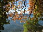 Temps d'automne et de bise