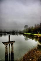 Temps de brouillard et rayon de soleil