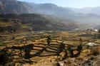Terrasses des civilisations Inca ou Pré-Inca