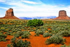 Terre rouge de Monument Valley