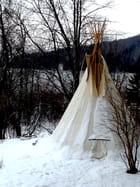 Tipi autochtone
