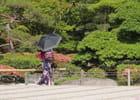 Toile Japonaise