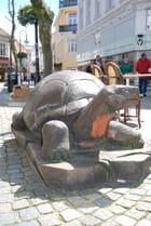 tortue dans la ville