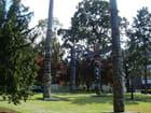 Totems de thunderbird park