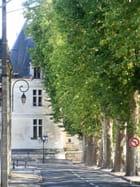 tour du pont Henri IV a Chatellerault