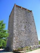 Tour Sarrazine (1)