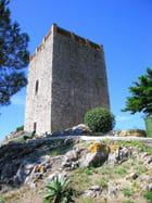 Tour Sarrazine (2)