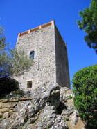 Tour Sarrazine (3)