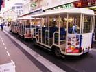 Train touristique - LOURDES..