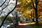 Un après-midi au parc...