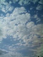 Un cerf volant dans le ciel