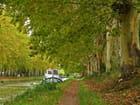 Un dimanche au bord du canal