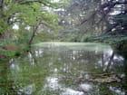 Un lac bien vivant