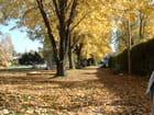 Un parc en automne
