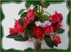 Un petit bouquet coloré (camélias)