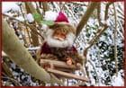 Un petit coucou du Père Noël en attendant la nuit de Noël