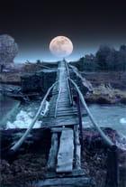 Un pont ???