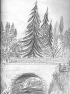 Un pont en Auvergne pour accéder aux champs et jardins