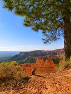 Un suisse a Bryce Canyon