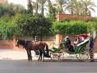 Un taxi de Marrakech..