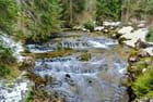 Un torrent dans le Doubs.