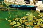 Une barque en eau calme...