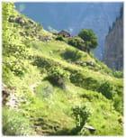 Une chapelle en montagne