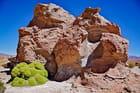 une cité de pierre dans le désert appelée