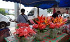 une fleuriste au marché de Saint Pierre