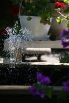 une fontaine dans un bassin