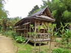 une maison dans les bambous