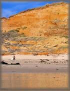 Une promenade l'après-midi dans les dunes de la Slack