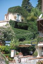 végétation méditerranéenne, luxuriante
