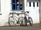 Vélos au repos