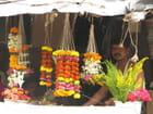 Vendeur des flores