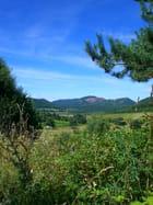 Verdoyante Auvergne