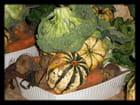 Vgx-Légumes 4 - Un panier AMAP