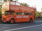 Vieil autobus