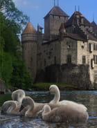 Visite familiale au château