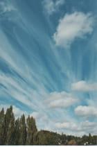 Voiles dans les nuages