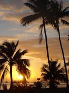 voyage en polynesie
