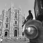 Vue de Milan