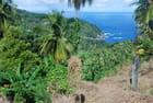 vue sur la côte Atlantique de la Dominique