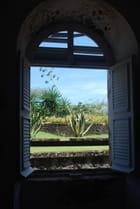 vue sur le jardin exotique du fort Napoléon