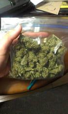 weed et coke whatsapp +33644678983