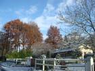 Ymare - première neige