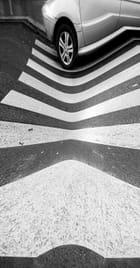 Zebra path Auto distorted