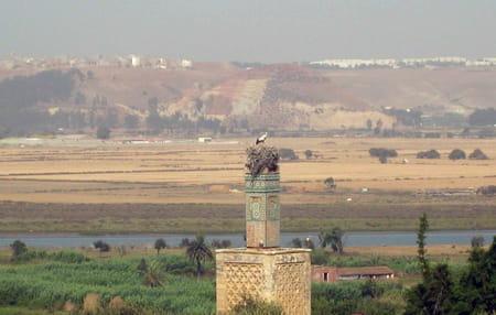 Nécropole de Chellah de Rabat